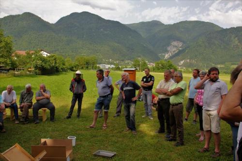 Odprtje učnega čebelnjaka, veterinarsko izobraževanje